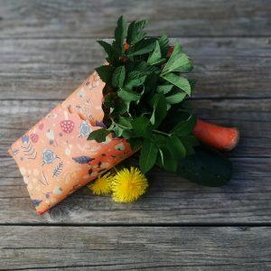 lesny voskáčik s muchotrávkami